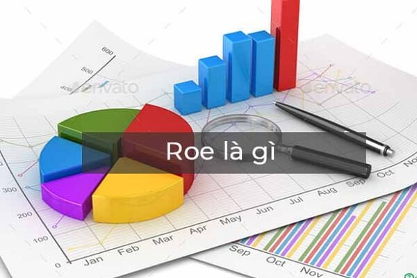 Những hạn chế khi sử dụng chỉ số ROE