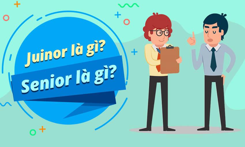 Sự khác biệt giữa junior và senior là gì?
